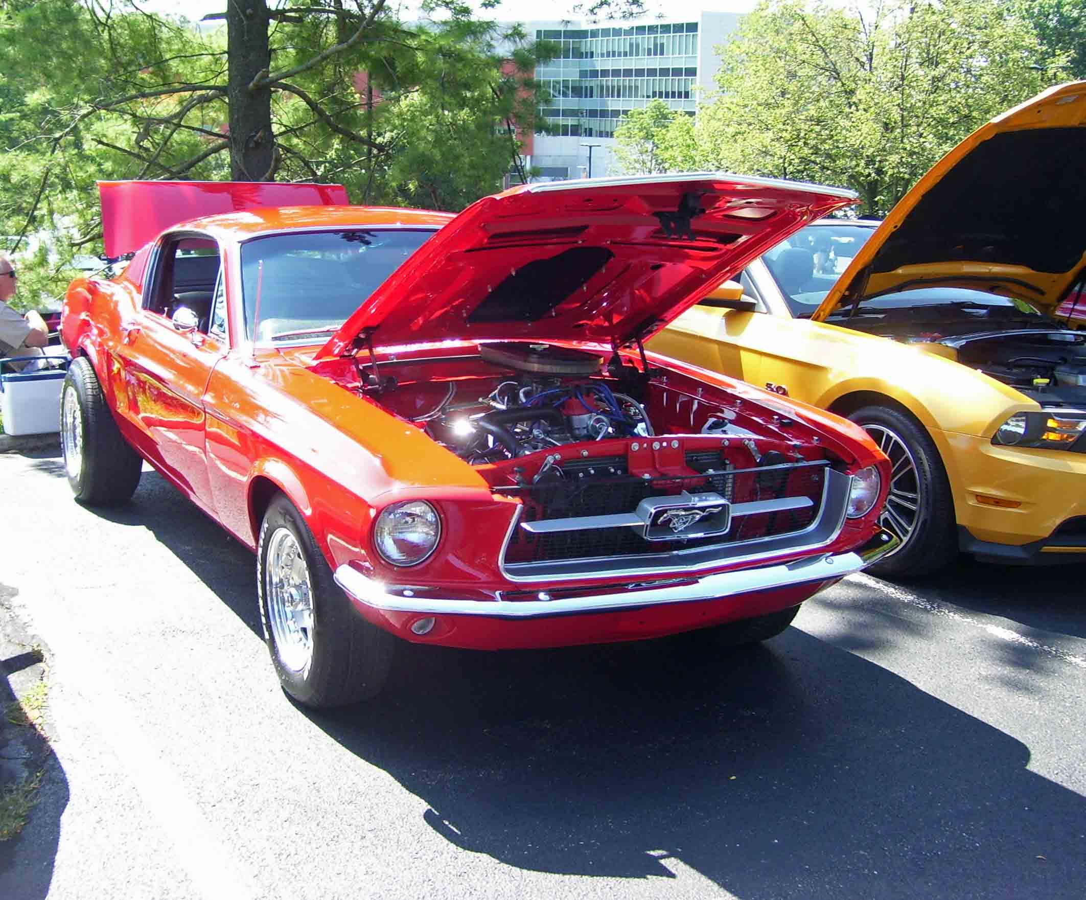 American Muscle Car Show Twin Tiers Mustang Club - Muscle car shows near me
